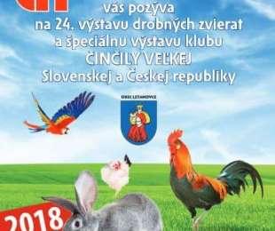 24. výstava drobných zvierat a Činčily veľkej | LETANOVCE